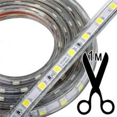 Уличная cсветодиодная лента SMD5050 (1м,60led на 1м,IP68)
